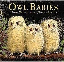 Podcast Owl Babies