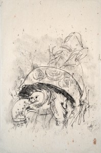 Print by Dorothy Schwartz of tortoise, inspired by Charles Darwin