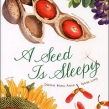 A Seed Is Sleepy Diana Hutts Aston